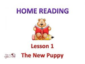 Lesson 1 The New Puppy New words New