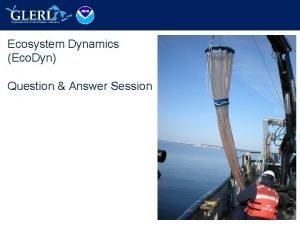 Ecosystem Dynamics Eco Dyn Question Answer Session Eco