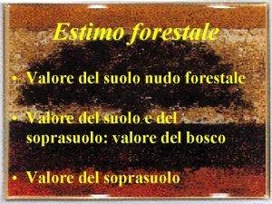 Estimo forestale Valore del suolo nudo forestale Valore