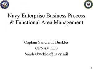 Navy Enterprise Business Process Functional Area Management Captain