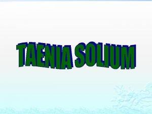 Taenia solium v the pork tapeworm producing taeniasis
