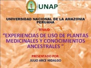 UNIVERSIDAD NACIONAL DE LA AMAZONIA PERUANA TITULO EXPERIENCIAS