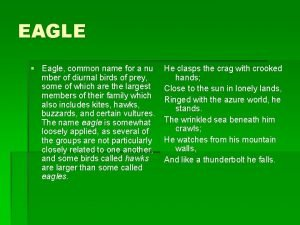 EAGLE Eagle common name for a nu mber