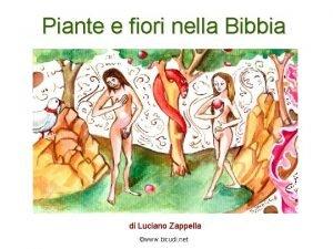 Piante e fiori nella Bibbia di Luciano Zappella