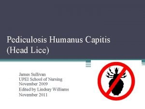 Pediculosis Humanus Capitis Head Lice James Sullivan UPEI