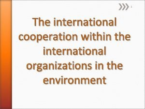 1 The international cooperation within the international organizations