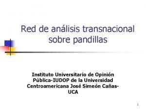 Red de anlisis transnacional sobre pandillas Instituto Universitario