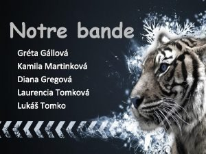 Notre bande Grta Gllov Kamila Martinkov Diana Gregov