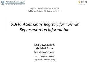 Unified Digital Format Registry a semantic registry for