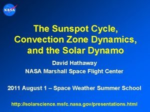 The Sunspot Cycle Convection Zone Dynamics and the