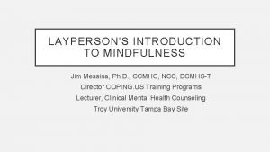 LAYPERSONS INTRODUCTION TO MINDFULNESS Jim Messina Ph D