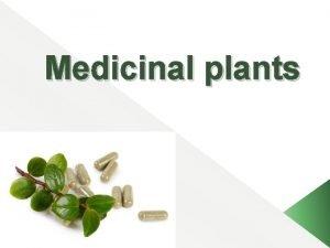 Medicinal plants Outline Definition of Medicinal plants Importance