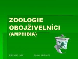 ZOOLOGIE OBOJIVELNCI AMPHIBIA SOS a SOU Kada Zoologie