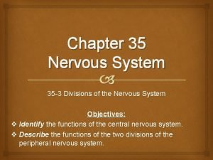 Chapter 35 Nervous System 35 3 Divisions of