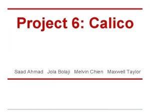Project 6 Calico Saad Ahmad Jola Bolaji Melvin