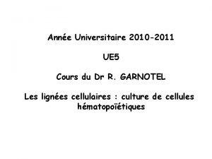 Anne Universitaire 2010 2011 UE 5 Cours du