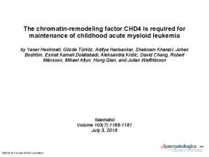 The chromatinremodeling factor CHD 4 is required for