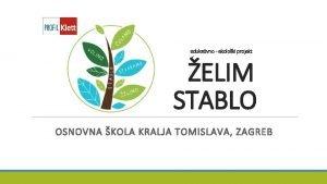 edukativno ekoloki projekt ELIM STABLO OSNOVNA KOLA KRALJA