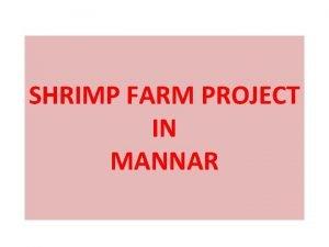 SHRIMP FARM PROJECT IN MANNAR SHRIMP FARM DESIGN