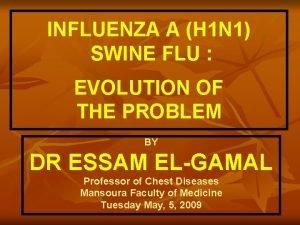 INFLUENZA A H 1 N 1 SWINE FLU