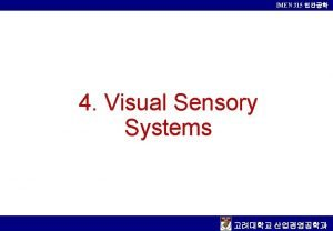 IMEN 315 4 Visual Sensory Systems IMEN 315