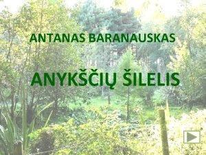 ANTANAS BARANAUSKAS ANYKI ILELIS I DALIS Kalnai kelmuoti