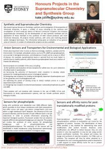 Honours Projects in the Supramolecular Chemistry and Synthesis