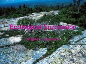 Ecological Succession Chapter 1 Lesson 4 Succession gradual