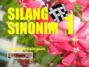 SILANG SINONIM MOHAMED NAIM DAIPI 1 D A
