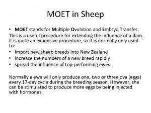 MOET in Sheep MOET stands for Multiple Ovulation
