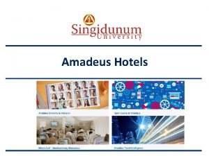 AUSTRIAN SERBIAN TOURISM PROGRAMMES Amadeus Hotels AUSTRIAN SERBIAN