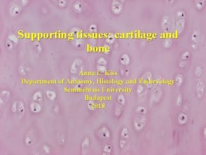 Supporting tissues cartilage and bone Anna L Kiss