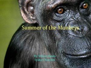 Summer of the Monkeys By Wilson Rawls Sydney