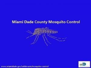 Miami Dade County Mosquito Control www miamidade govsolidwastemosquitocontrol