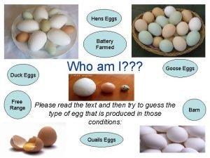 Hens Eggs Battery Farmed Duck Eggs Free Range