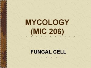 MYCOLOGY MIC 206 FUNGAL CELL FUNGAL CELL The