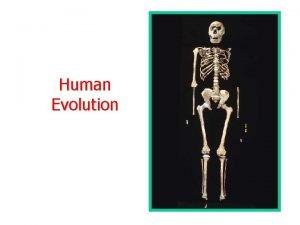 Human Evolution Darwin and Human Evolution Lamarck posed