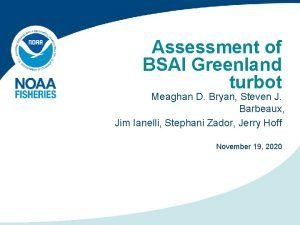 Assessment of BSAI Greenland turbot Meaghan D Bryan