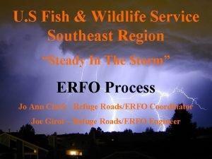 U S Fish Wildlife Service Southeast Region Steady
