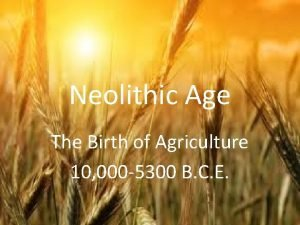 Neolithic Age The Birth of Agriculture 10 000