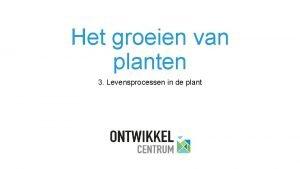 Het groeien van planten 3 Levensprocessen in de