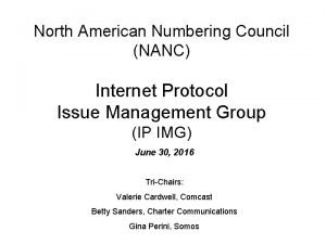 North American Numbering Council NANC Internet Protocol Issue