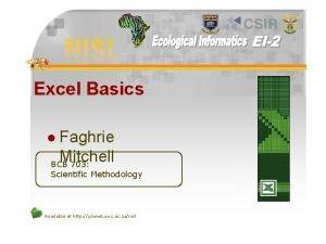 Excel Basics Faghrie Mitchell BCB 703 l Scientific