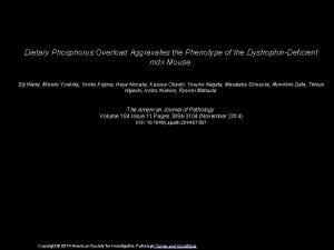Dietary Phosphorus Overload Aggravates the Phenotype of the