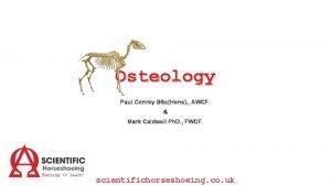 Osteology Paul Conroy BScHons AWCF Mark Caldwell Ph