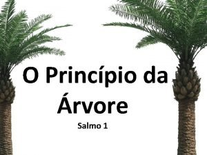 O Princpio da rvore Salmo 1 Salmos 1