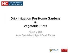 Drip Irrigation For Home Gardens Vegetable Plots Aaron