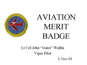 AVIATION MERIT BADGE Lt Col John Gator Wallin
