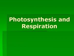 Photosynthesis and Respiration Photosynthesis Photosynthesis is the process