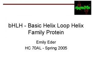 b HLH Basic Helix Loop Helix Family Protein